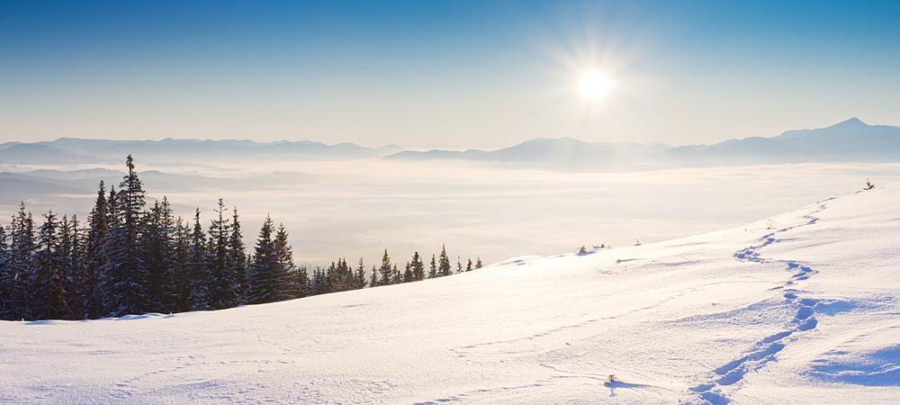 Verschneite Winterlandschaft im Bayerwald